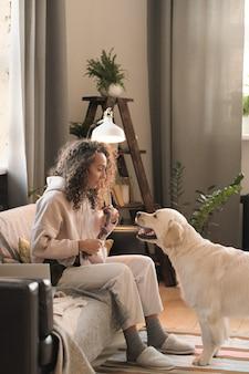 Молодая женщина сидит на диване с игрушкой и одевает собаку в комнате дома