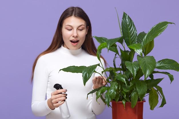 若い女性が植木鉢に植物にスプレーし、広く開いた口で鉢植えの花を見て