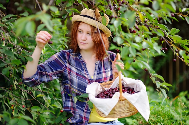 Young woman in straw hat pick berries from cherry tree