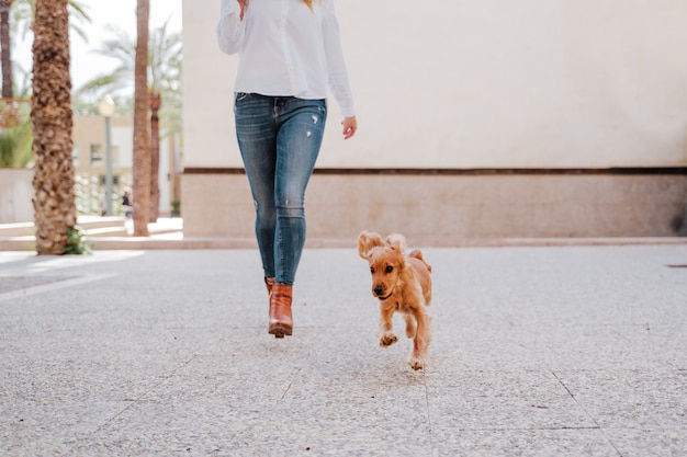 Young woman at the street walking with her cute cocker dog. lifestyle outdoors with pets