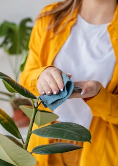 Молодая женщина заботится о зеленых растениях