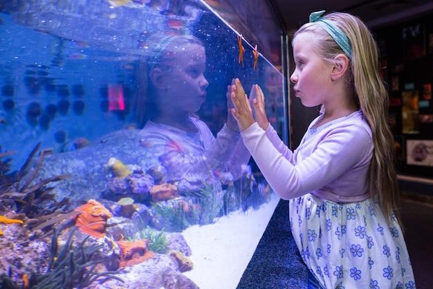 Young woman touching a starfish-tank