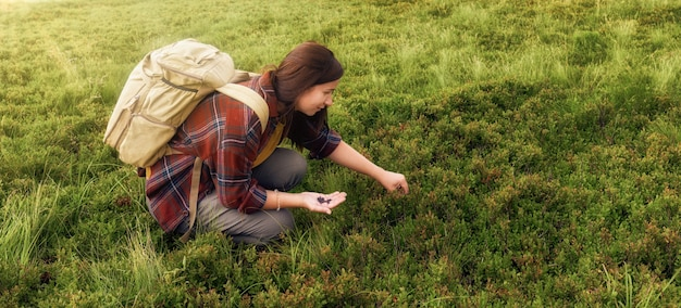 Young woman tourist with backpacker collects blueberries in field in the mountains. active and healthy lifestyle concept