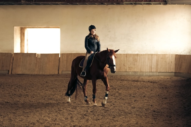 Young woman training brown horse in riding hall