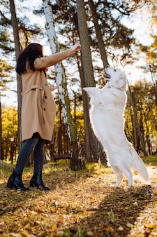 若い女性は、黄色い秋の公園でゴールデンレトリバーを歩いて遊んでいます。友情、ケア、ペットの愛の概念。