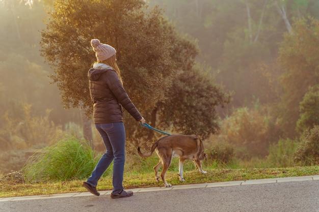 朝日、暖かい輝きと長い影の光線で自然の中で彼女の犬を歩く若い女性