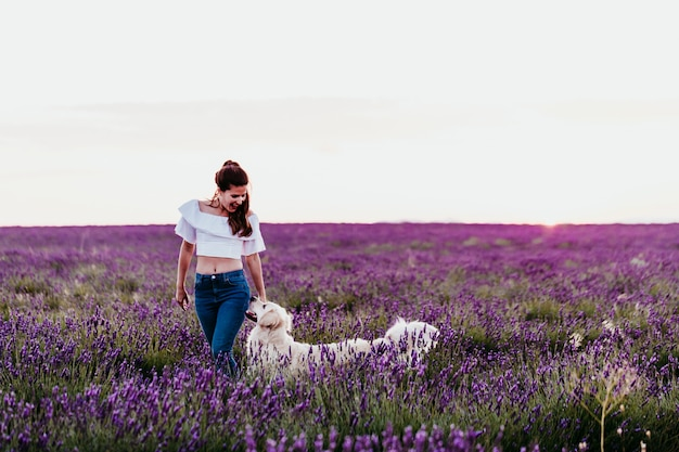 Young woman walking on a purple lavender field with her golden retriever dog at sunset. pets outdoors