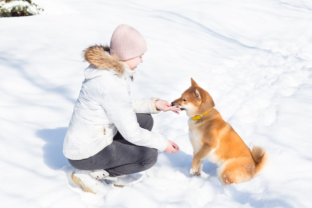 Young woman walking with dog shiba inu at winter time with snow in forest