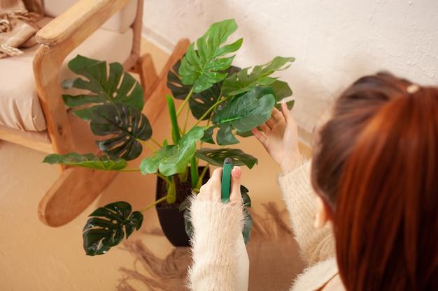꽃 베이지 색 인테리어 녹색 monstera에 물을 젊은 여자