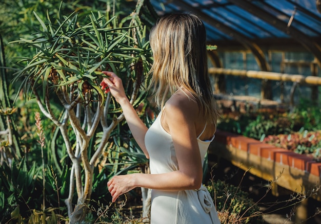 Young woman in a white dress in a greenhouse with succulents