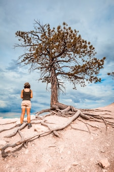A young woman in a white half-dead tree on a bryce viewpoint. utah, united states