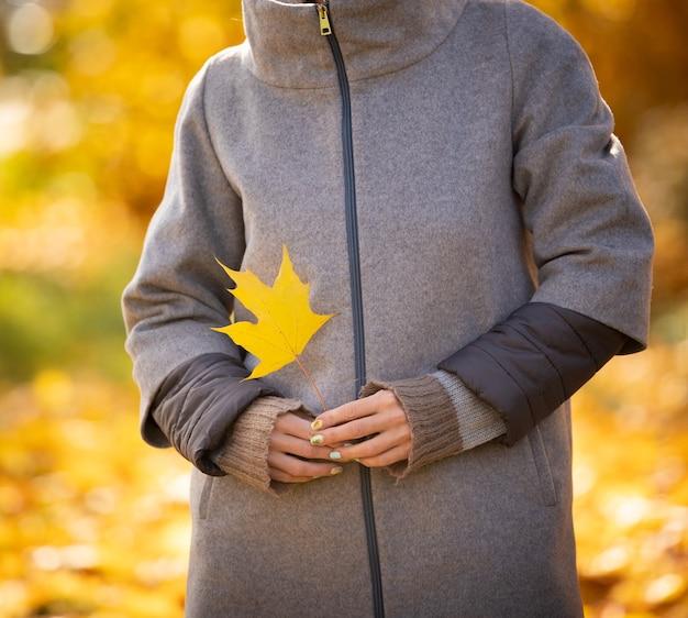 秋の夕日を背景にカエデの葉を持つ若い女性