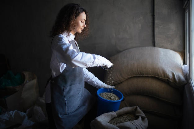 Young woman worker roaster fills green coffee beans jar with scoop.