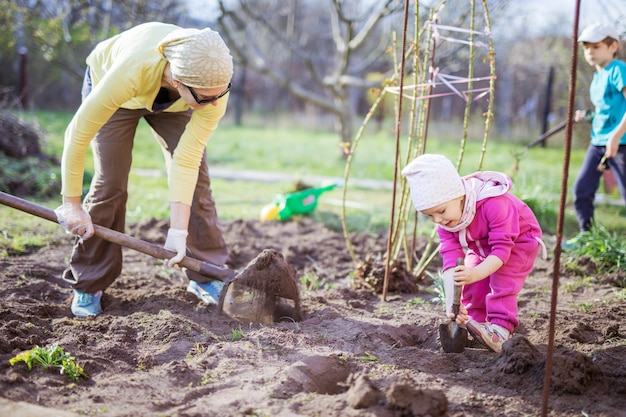 Young woman working in garden while her little daughter playing with spade beside her and son