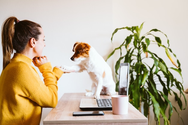 Young woman working on laptop at home, cute small dog besides. work from home
