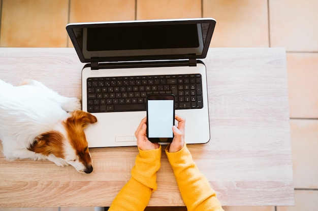 Young woman working on laptop at home, wearing protective mask, cute small dog besides.