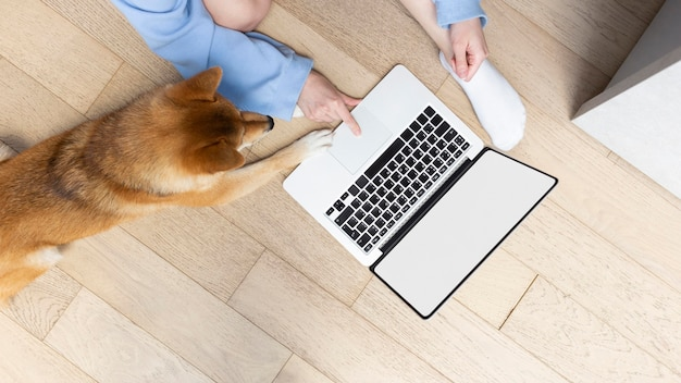 Молодая женщина, работающая на своем ноутбуке рядом со своей собакой