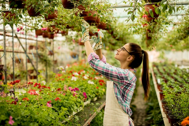 温室で春の花で働く若い女性