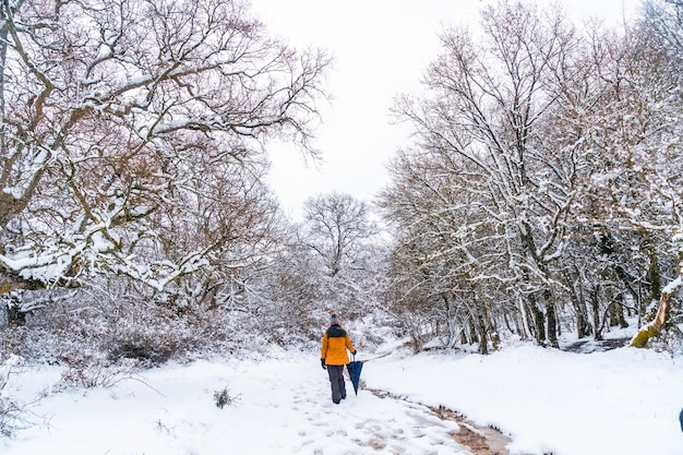 A young woman in a yellow jacket walking along the path of frozen trees. snow in the town of opakua near vitoria in araba
