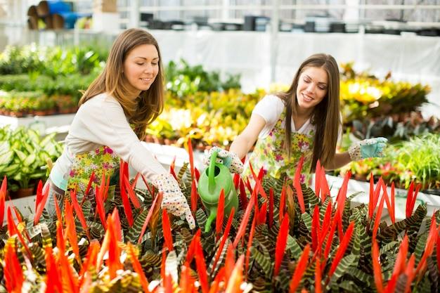 花畑の若い女性