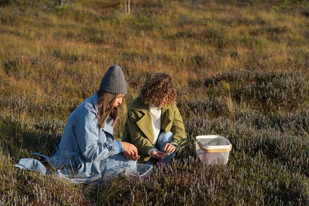 시골에서 딸기를 모으는 가을 주말 늪에서 크랜베리를 따는 젊은 여성