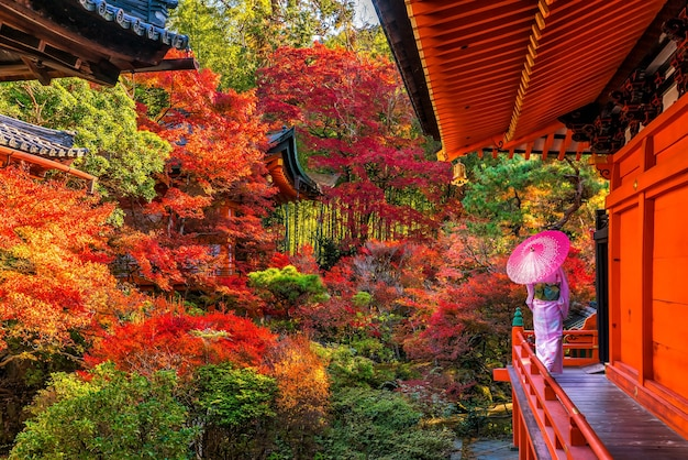 京都の秋に色とりどりの赤いカエデの木と伝統的な日本の着物を着ている若い女性