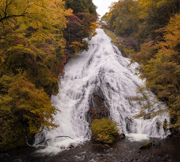 Yudaki waterfall autumn forest nikko japan