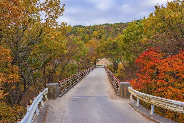 Yukiwari bridge and yukiwari gorge of shirakawa. in the outskirts of this bridge, autumn fall leaves are very beautiful.