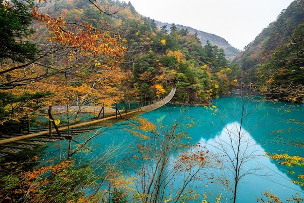 Подвесной мост юмэ-но цурибаши на изумрудной реке в осенний сезон на суматакё