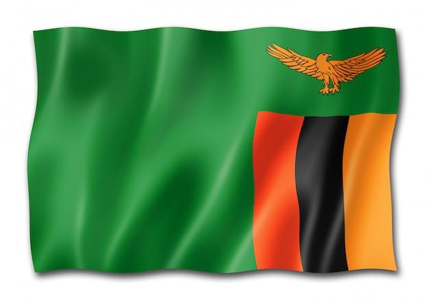 Zambian flag isolated