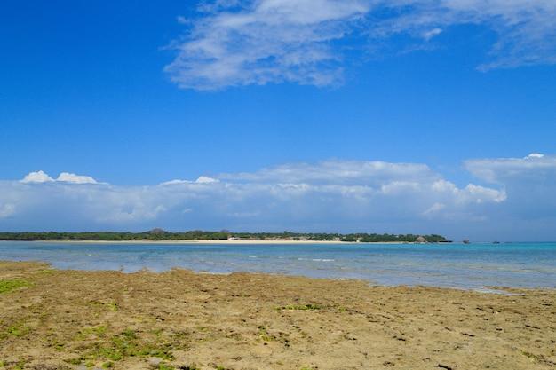 Пейзаж пляжа занзибара, танзания, панорама африки. пейзажи индийского океана