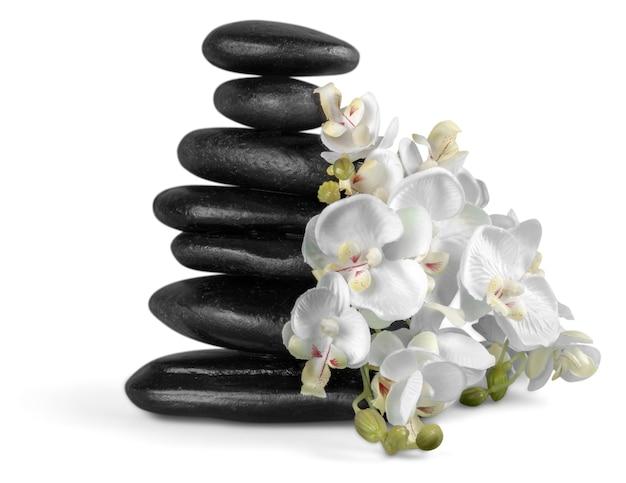 Zen basalt stones and flowers on background