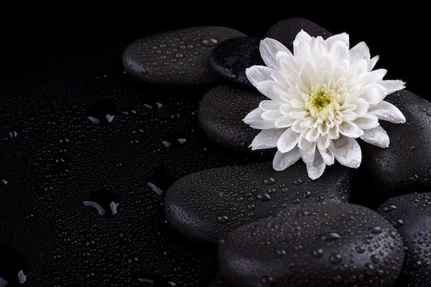 Zen basalt stones