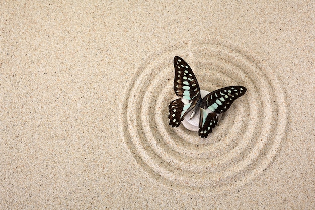 Zen garden meditation stone for concentration and relaxation with butterfly. top view