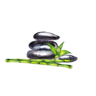禅スパの小石と竹の緑の茎と葉で撮影。水彩画。