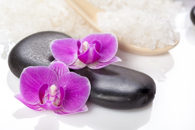 Zen stone and orchid, spa concept
