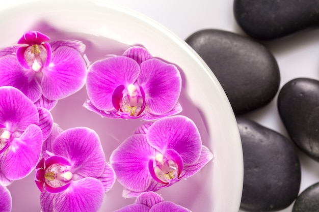 Zen stone and orchid. spa concept
