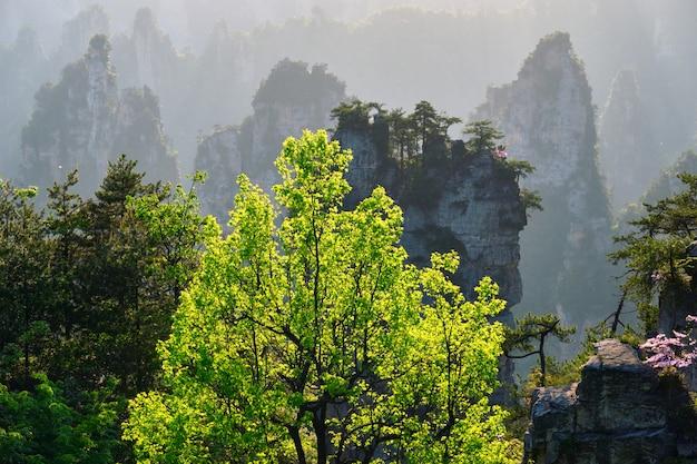 Горы чжанцзяцзе, китай