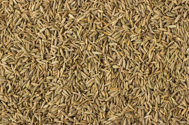 Zira spice as a background, natural seasoning texture