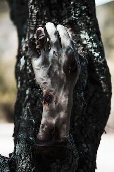 Zombie hand hanging on tree