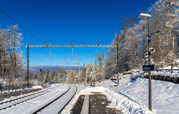 Zurich s-bahn on uetliberg mountain