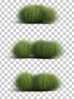 セッジ草の3 dレンダリング