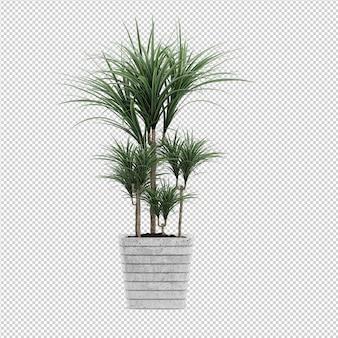 等尺性植物3 dレンダリング
