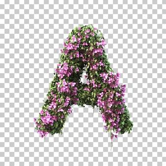 3d-рендеринг бугенвиллии алфавита a