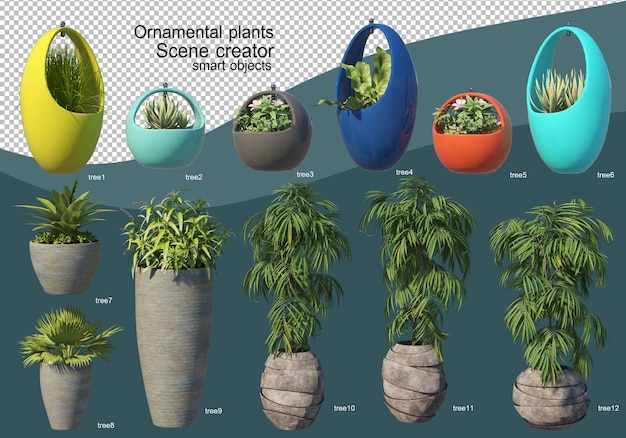 3d display of various types of ornamental arrangement
