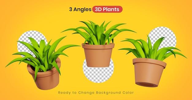 3d домашние растения