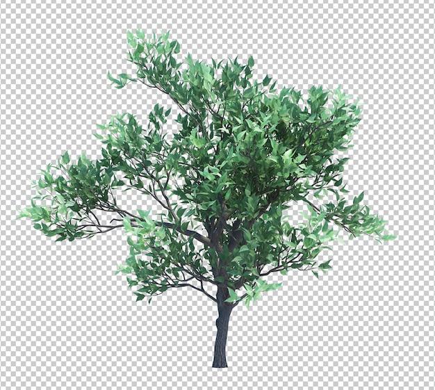 白で隔離される3 dレンダリングブラシツリー