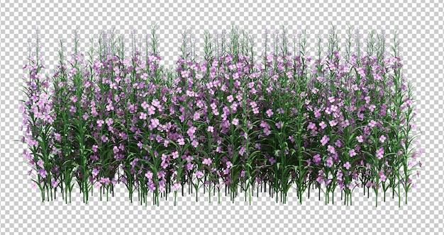 3d render brush tree, изолированные на белом