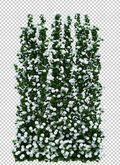 3d render of brush tree isolated