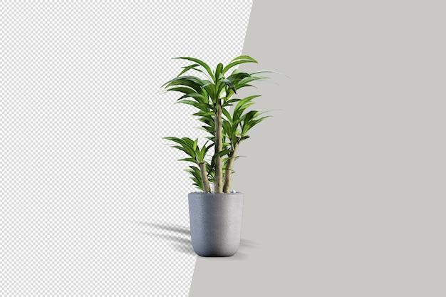 分離された3dレンダリングブラシツリー